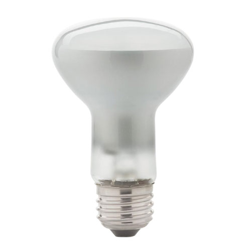 29-W R20 Halogen Flood Lightbulb