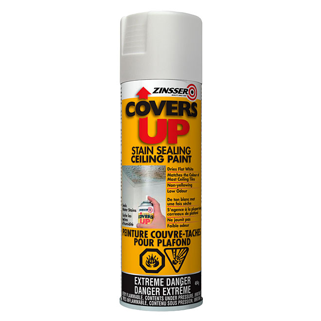 """Covers Up"" Stain-Sealing Ceiling Paint Spray - White"