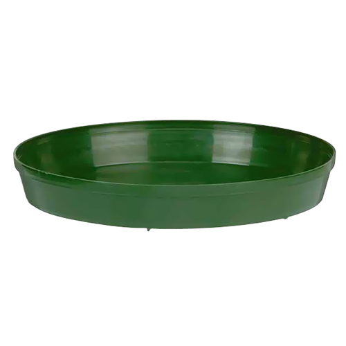 8-in Saucer
