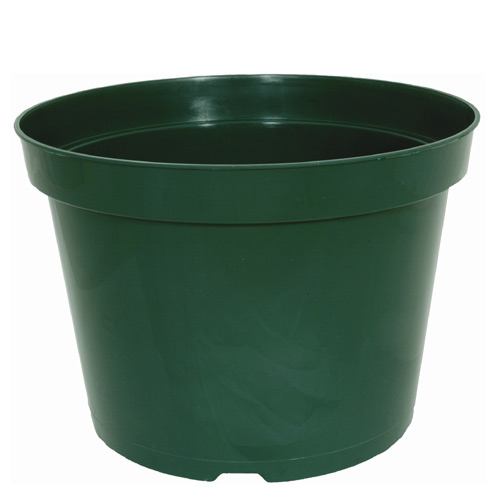 6-in Flower pot