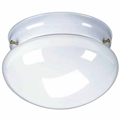 1-Light Ceiling Fixture