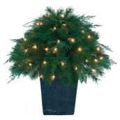 70-Light Outdoor Topiary - 129 Tips - 26