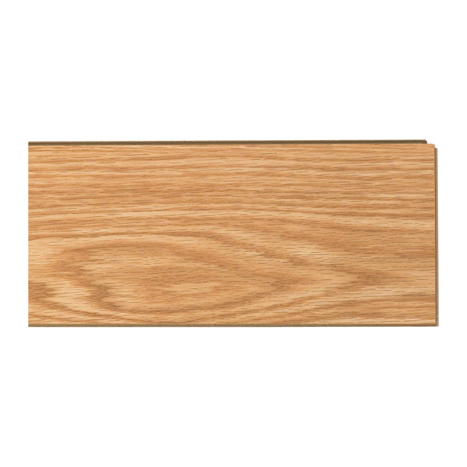 Laminate Flooring 10mm - Premium - Canada Oak