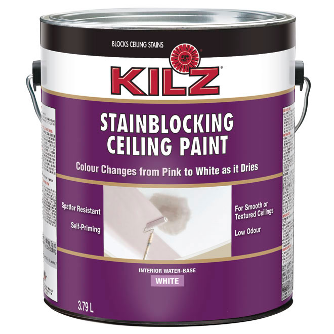 stain blocking ceiling paint rona