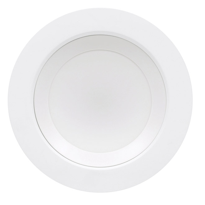 13-W LED 2-in-1 Flushmount