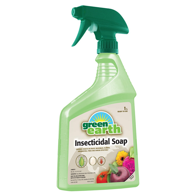 Insecticide soap