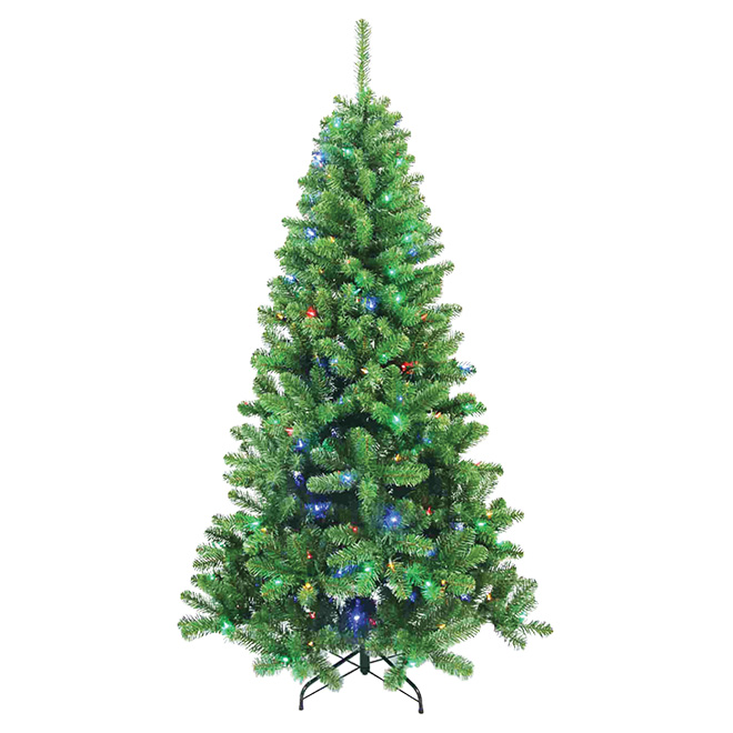 Pre-Lit Berwyn Christmas Tree - 300 LED - 860 Tips - 7'