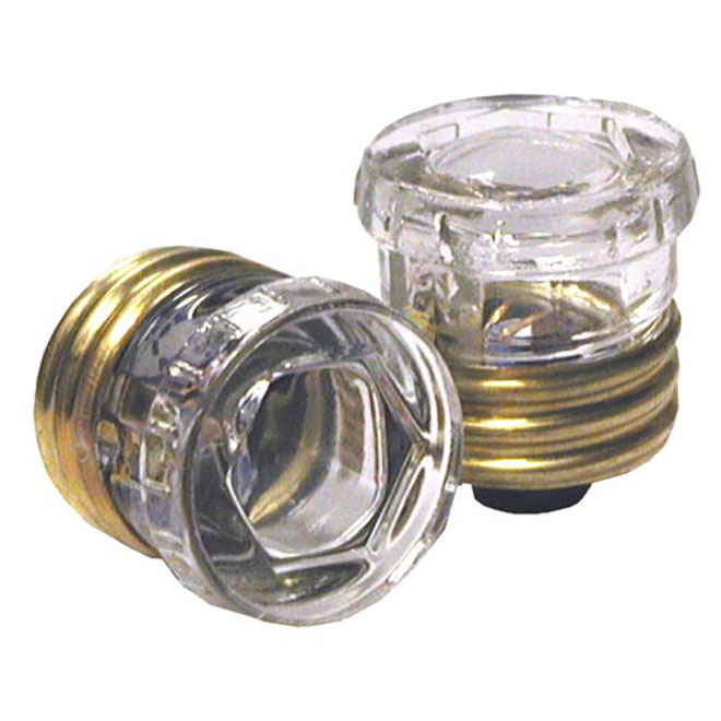 Pack of 2 25 A Time-Delay Fuse