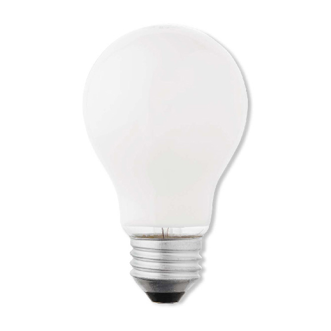 A19 Household Lightbulb