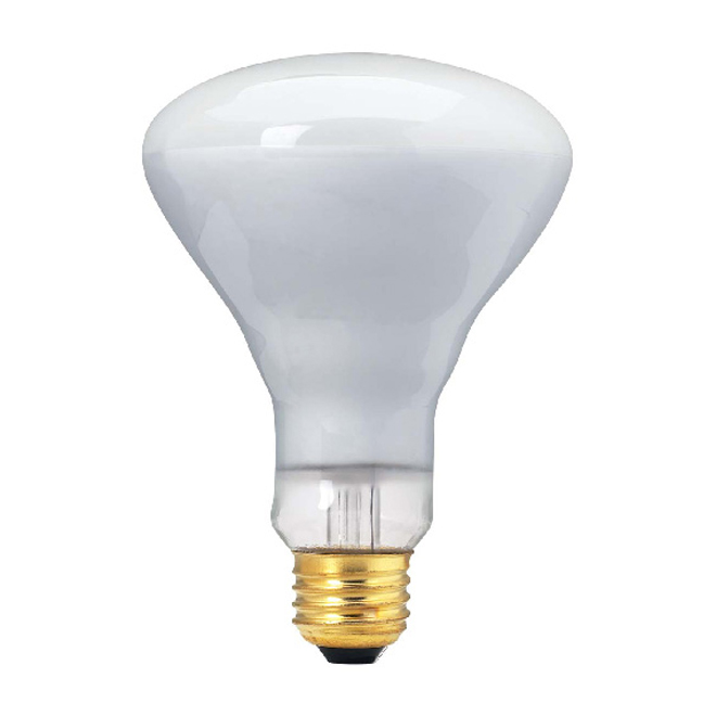 Lightbulb - 65-W Incandescent Lightbulb