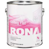 Flat Finish Interior Ceiling Paint