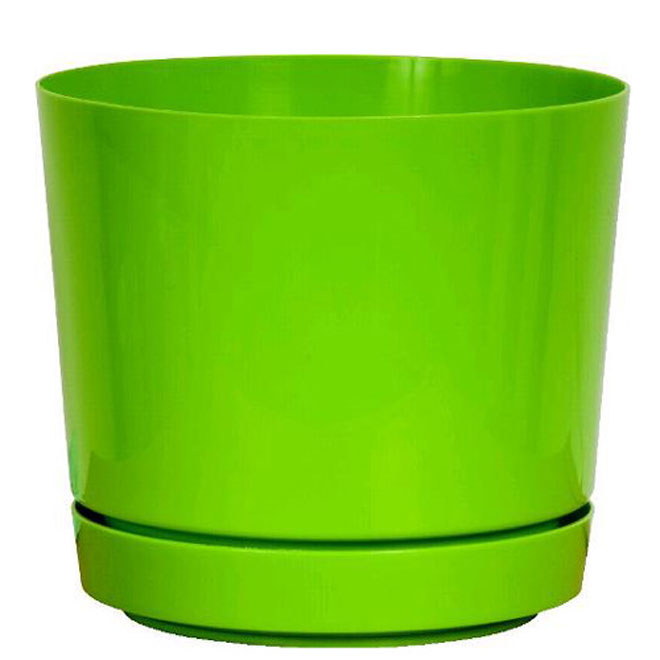 8-in Pot and Saucer - Green