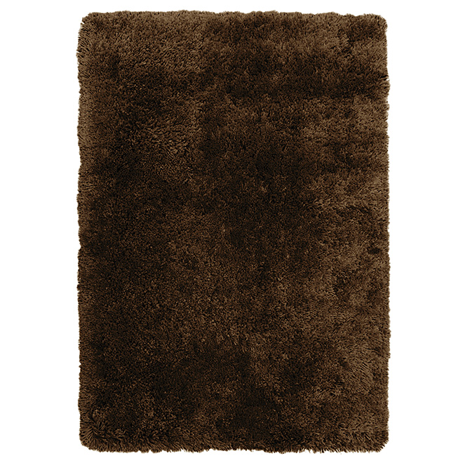"""Plain Shag"" Carpet"