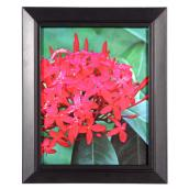 Set of 2 Frames