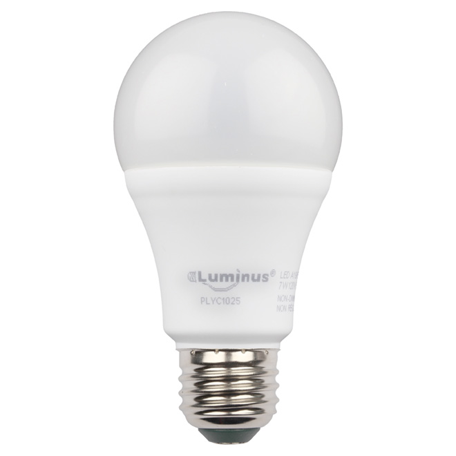 6W LED Non-Dimmable A19 Bulb - Day Light