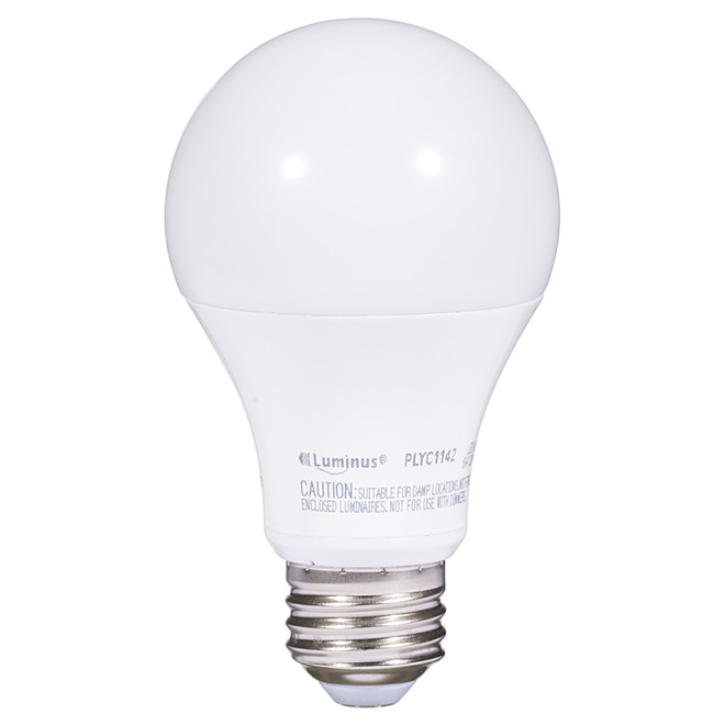 6W LED Non - Dimmable A19 Bulb - Warm White
