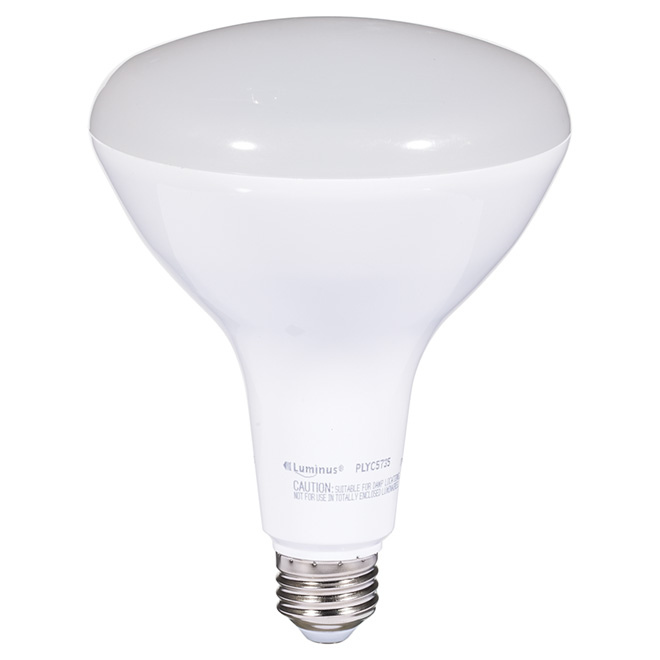 17W LED Dimmable BR40 Bulb - Day Light