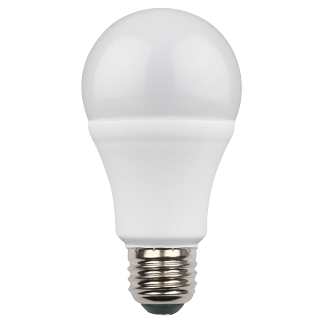 9W LED Non Dimmable A19 Bulb - Warm White