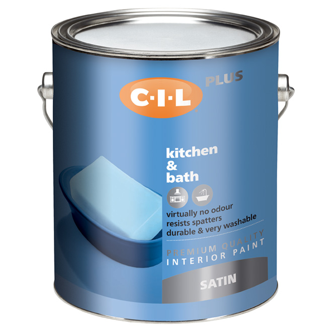 Latex Interior Paint