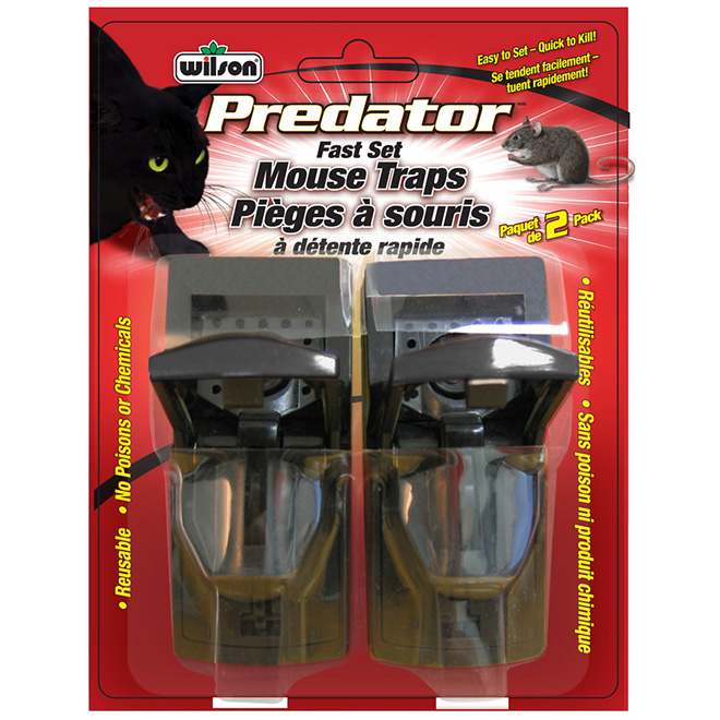 Fast Set Mouse Trap - Pack of 2