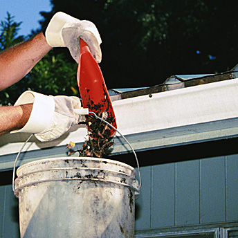 Exterior maintenance includes cleaning the gutters