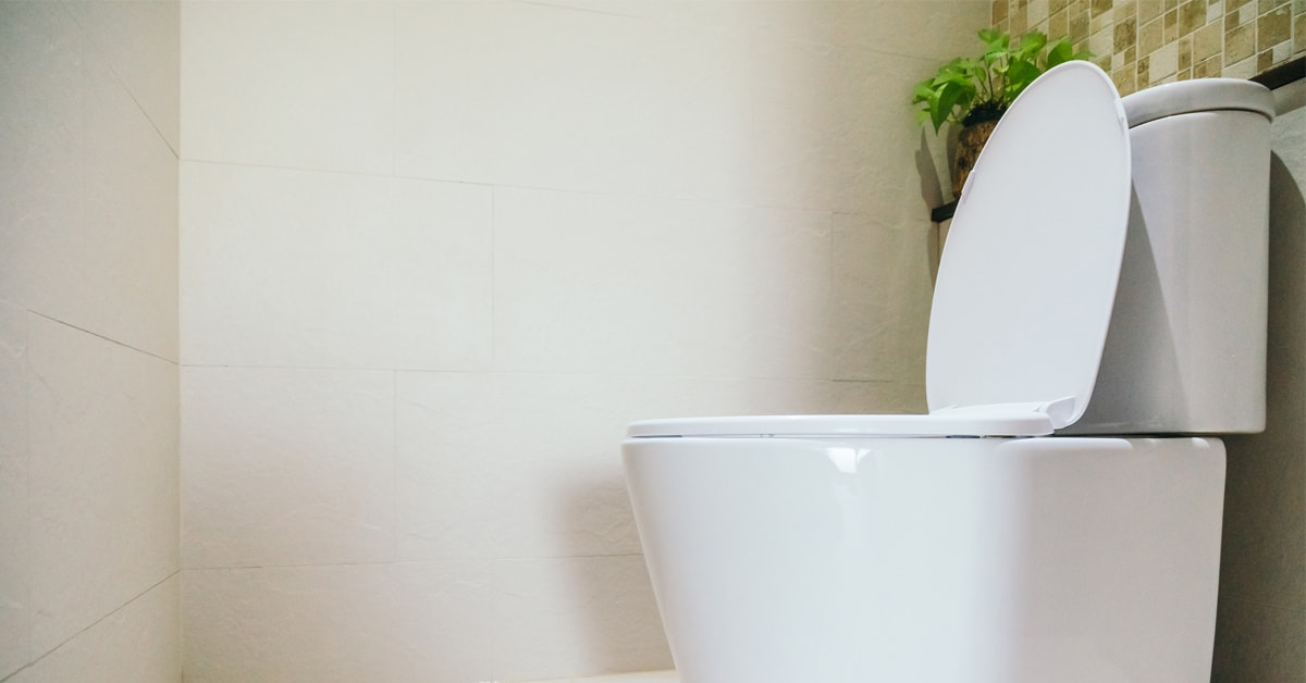 Buying Guide: toilets