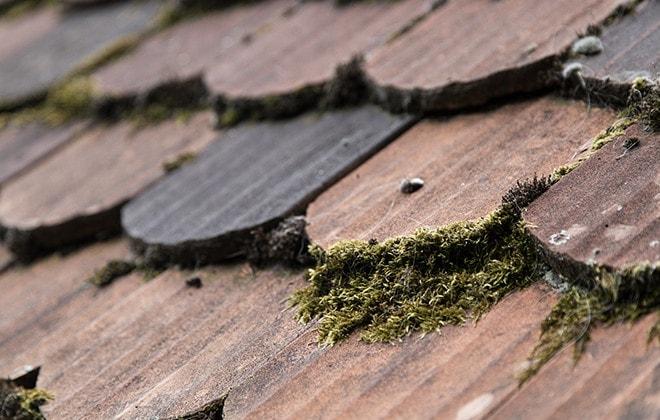 10 astuces pour entretenir la toiture et le rev tement ext rieur rona. Black Bedroom Furniture Sets. Home Design Ideas