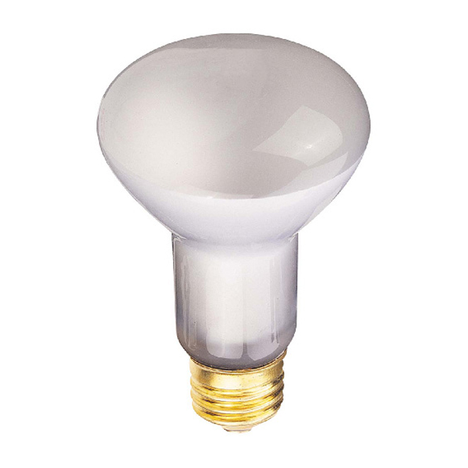 25-W lightbulb