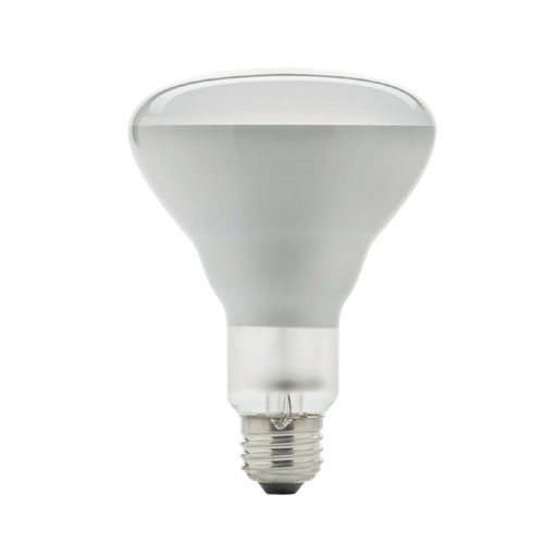 43-W BR30 Halogen Flood Lightbulb