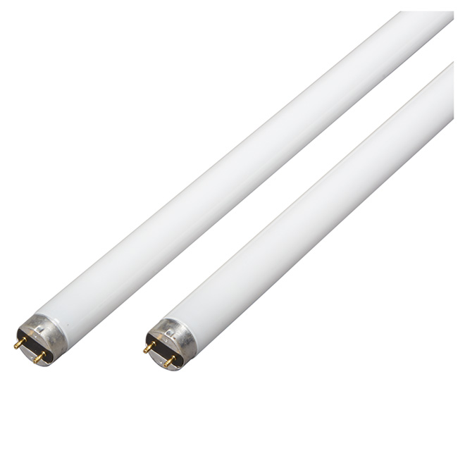 "Tube fluorescent 48"", 32 W, blanc froid, paquet de 2"