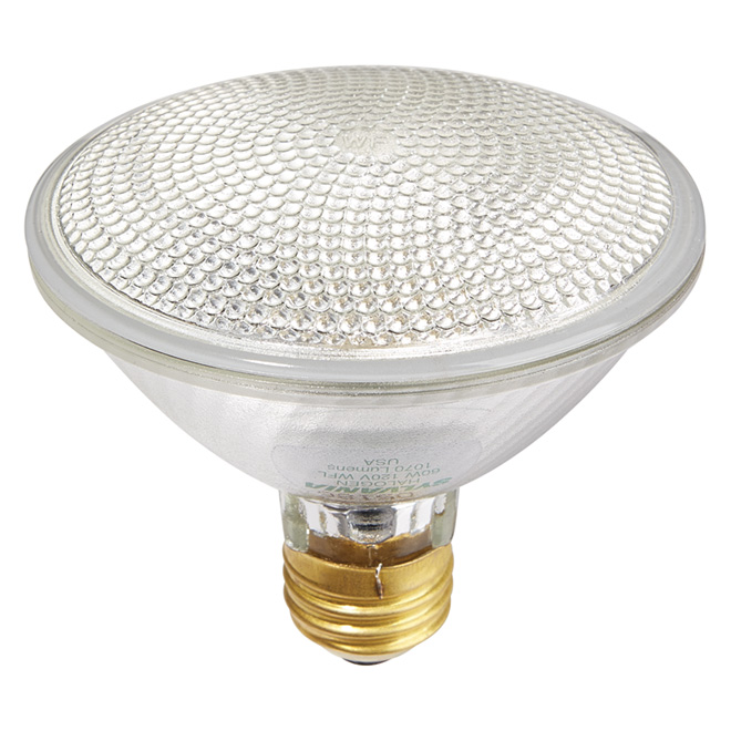 60W Reflector Halogen PAR30 Flood Light Bulb - 120V