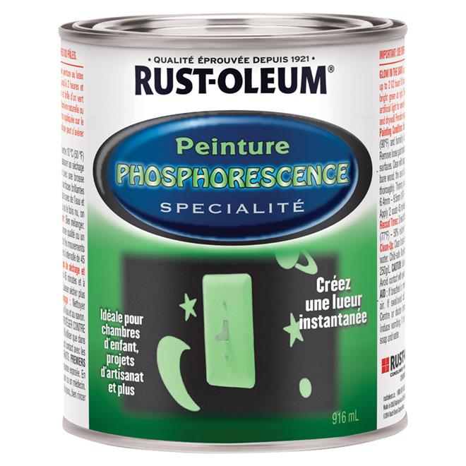 Peinture phosphorescente 916 ml rona for Peinture phosphorescente pour exterieur