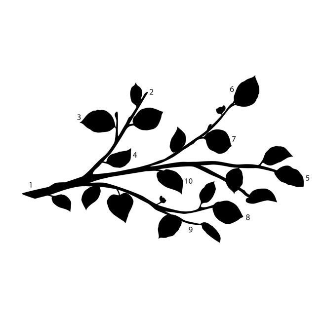 """Branch and Flower "" Wall Decals with"