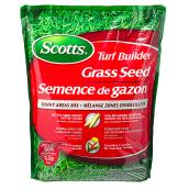 Grass Seeds for Sunny Areas - 1 kg