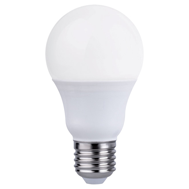 Ampoule DEL A19 5,5W, intensité variable, blanc doux, 2/pqt