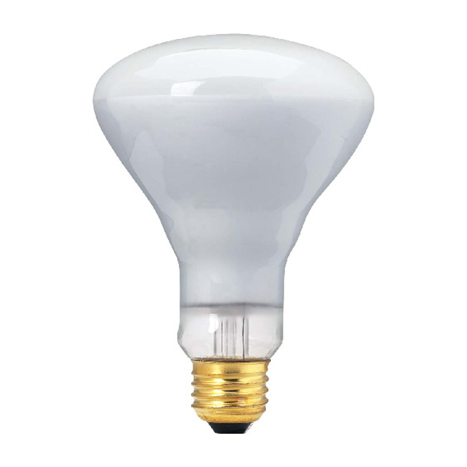 65- W Incandescent Lightbulb