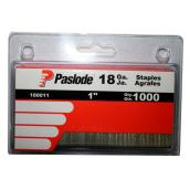 Galvanized Staples - 18GA - 1