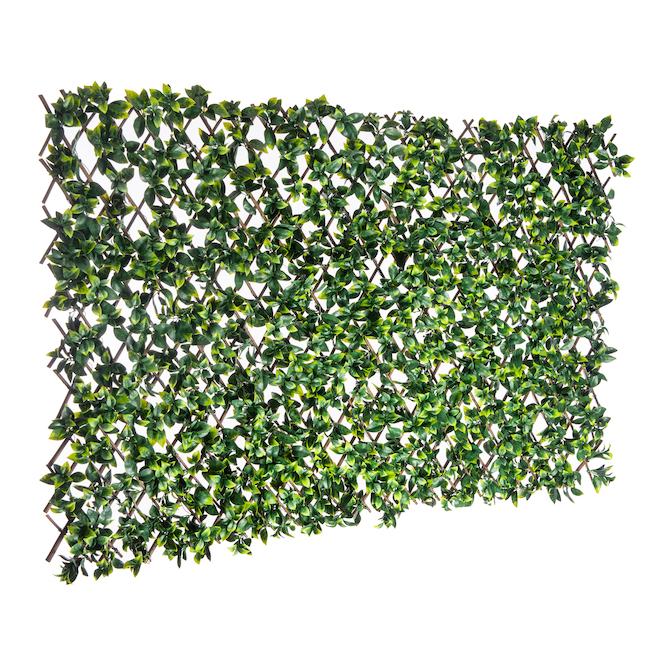 Extendable Lattice Wood Plastic 36 Quot X 72 Quot Green Rona