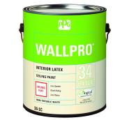 Interior Ceiling Paint - Latex -  3.78 L - Flat White