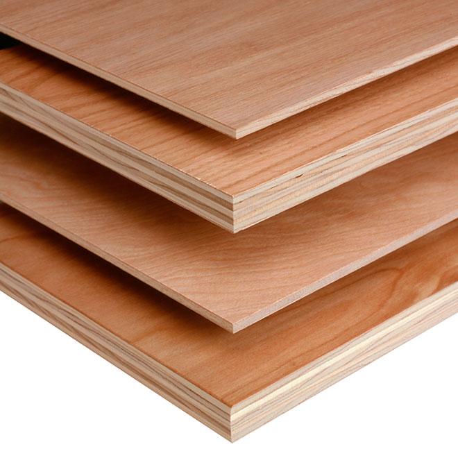 Plywood Birch C2 18 Mm X 48 Quot X 96 Quot Rona