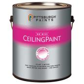 Color-Changing Ceiling Paint - 3.78 L - Flat White