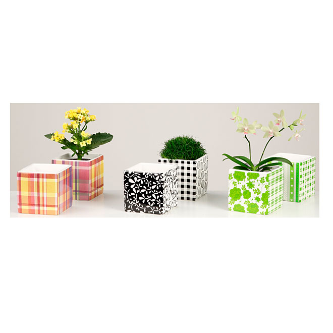 "Mini Ceramic Planter Pot - 2.5"" - Assorted"