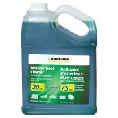 All-Purpose Cleaner for Pressure Washer - 3.79 L