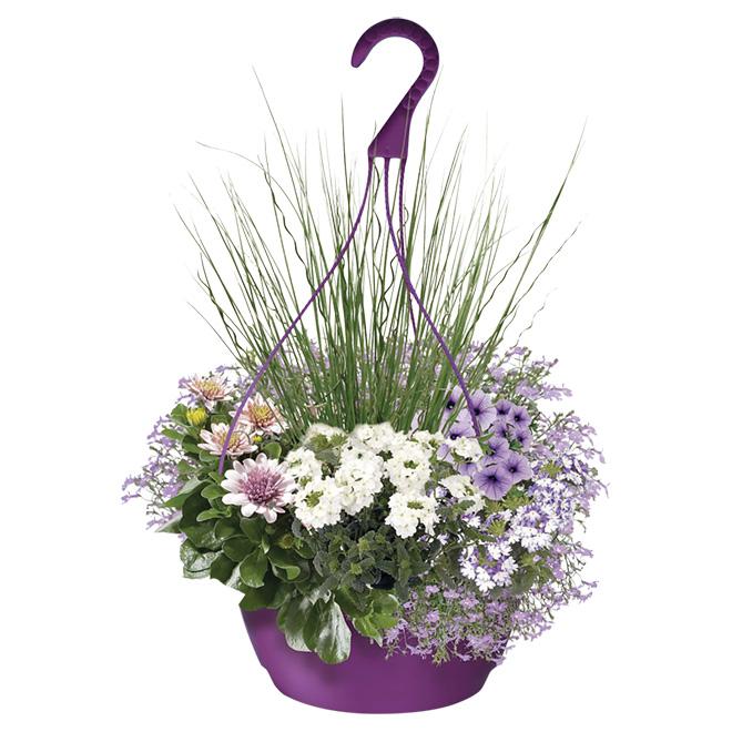 Rona Flower Baskets : Hanging basket quot rona