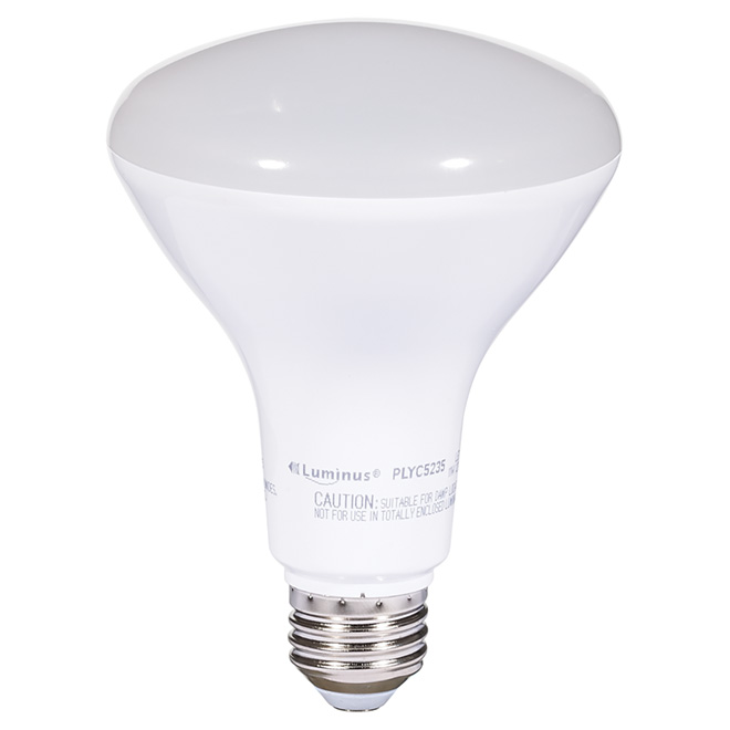 11W LED Dimmable BR30 Bulb - Day Light