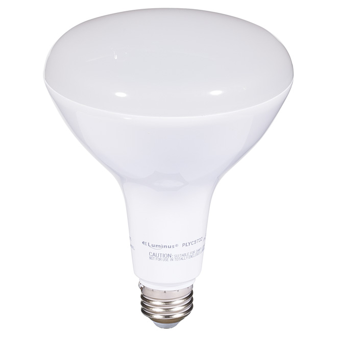 Ampoule DEL BR40 17 W, intensité variable, blanc chaud