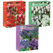 Fall Bulbs - 40-Pack
