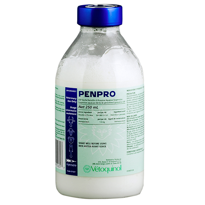 Penicillin Injection Solution - Penpro - 250 mL