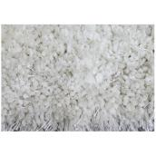 Shag Area Rug - 4' x 6' - Polyester - White