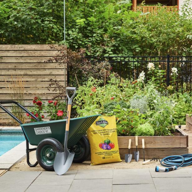Jardin sans pelouse la pelouse est le cur battant du for Cat entretien jardin
